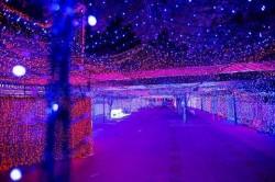 Canberra okupana božićnim žaruljicama