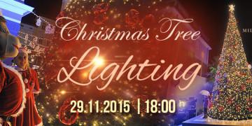 christmas tree lightening 2015
