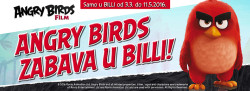 angry birds u billi