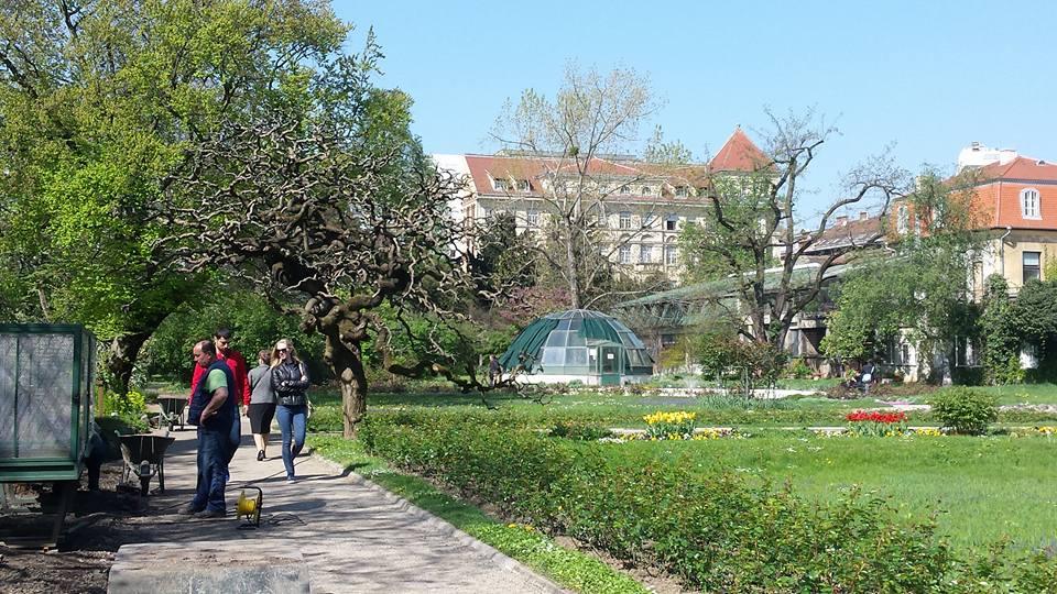 Radionica Tomago U Botanickom Vrtu Klinfo Hr