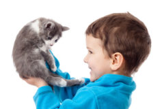 Little boy holding in hands adorable kitten, isolated on white
